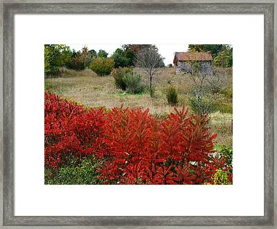 Red Cabin Framed Print by Michael L Kimble