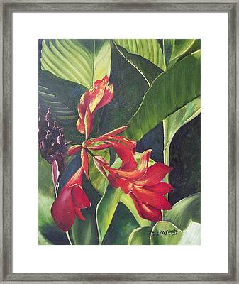 Red Cannas Framed Print