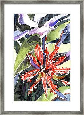 Red Cape Plumbago  Framed Print by Mindy Newman