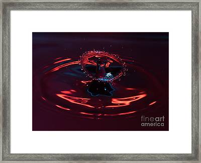 Red Carousel Framed Print