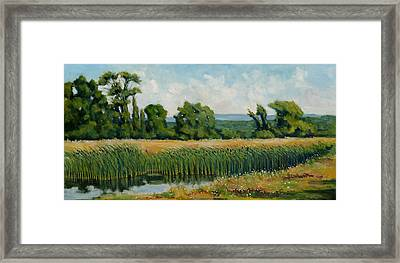 Red Cattails On Zion Framed Print by Robert James Hacunda