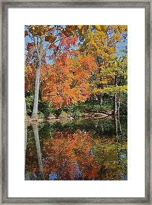 Red Cedar Banks Framed Print