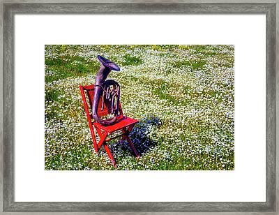 Red Chair With Old Horn Framed Print