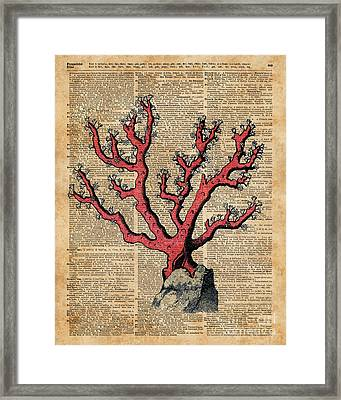 Red Coral Vintage Illustration Dictionary Art Framed Print by Jacob Kuch