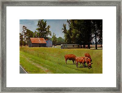 Red Cows On Grapevine Road Framed Print by Doug Strickland