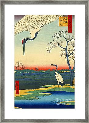 Red Crowned Cranes 1857 Framed Print by Padre Art