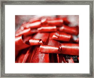 Framed Print featuring the photograph Red Curls by Stephen Mitchell