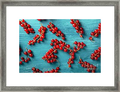 Red Currant Framed Print by Jelena Jovanovic