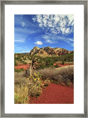 Framed Print featuring the photograph Red Dirt And Cactus In Sedona by James Eddy