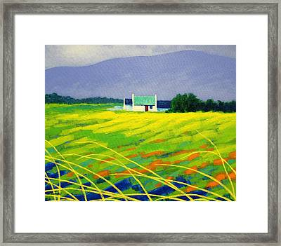 Red Door County Wicklow Framed Print by John  Nolan