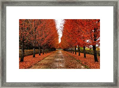 Red Drive Framed Print