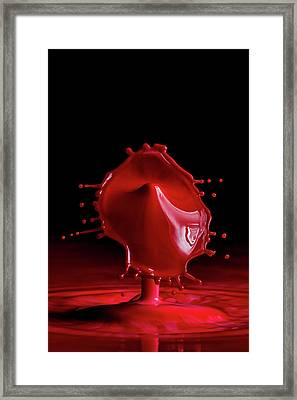 Red Drop Framed Print