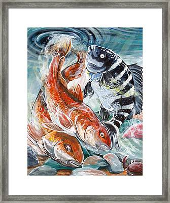 Framed Print featuring the painting Red Drums And A Sheephead by Jenn Cunningham