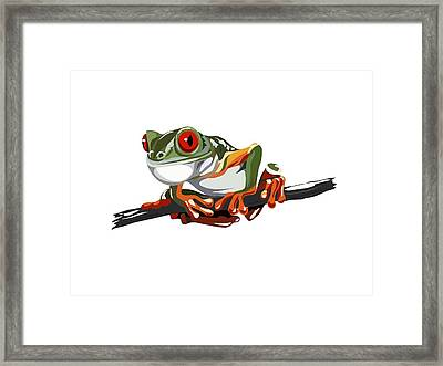 Red-eyed Tree Frog Framed Print by Alexandra Panaiotidi