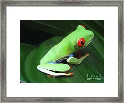 Red Eyed Tree Frog  Framed Print by Aline Halle-Gilbert