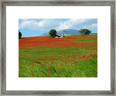 Red Fields Framed Print by Judy Kirouac