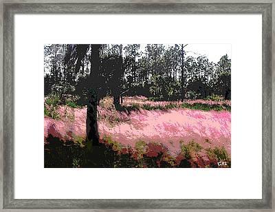 Red Fire Grass Field Gulf Coast Florida Detail Framed Print by G Linsenmayer