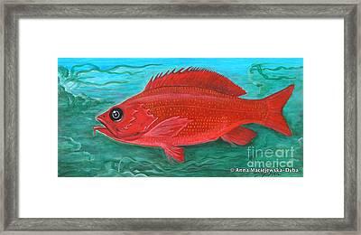 Red Fish Framed Print by Anna Folkartanna Maciejewska-Dyba