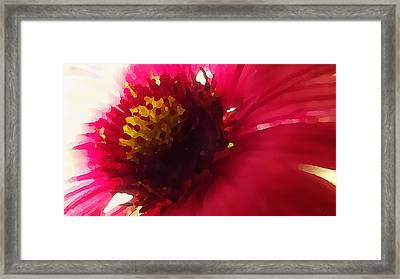 Red Flower Abstract Framed Print