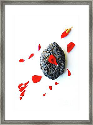 Red Flower And A Rock 1 Framed Print by Masako Metz