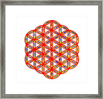 Red Flower Of Life Framed Print by Chandelle Hazen