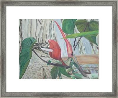 Framed Print featuring the painting Red Flowering Vine by Hilda and Jose Garrancho