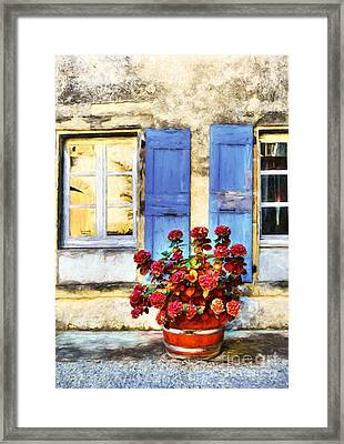 Red Flowers And Blue Shutters Framed Print by Mel Steinhauer