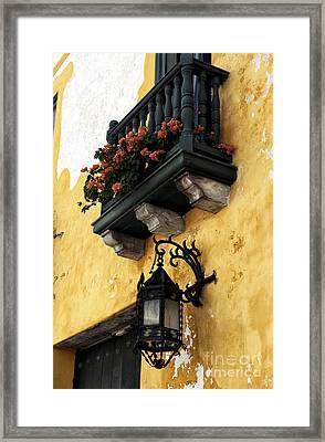 Red Flowers In Cartagena Framed Print by John Rizzuto