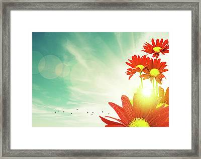Red Flowers Spring Framed Print by Carlos Caetano