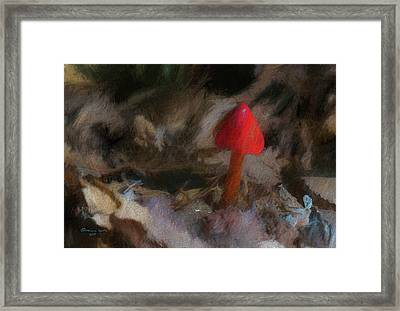 Red Forest Mushroom Framed Print