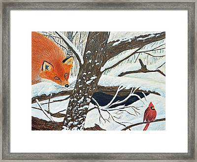 Red Fox And Cardinal Framed Print