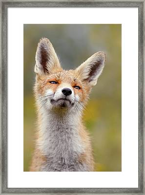 Red Fox At Ease Framed Print