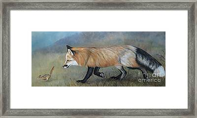 Red Fox Encounter Framed Print by Charlotte Yealey