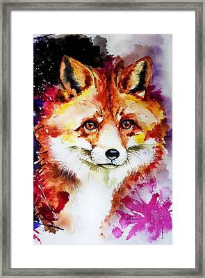 Red Fox Framed Print by Isabel Salvador