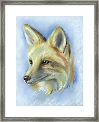 Red Fox Portrait Framed Print by MM Anderson