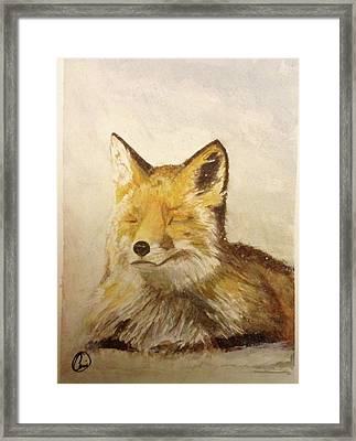 Red Fox Rest Framed Print