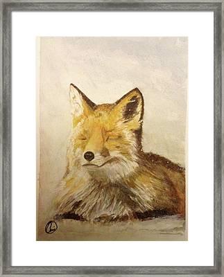 Red Fox Rest Framed Print by Annie Poitras