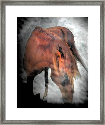 Red Fury On The Mountain Framed Print