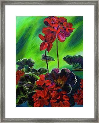 Red Geranium Framed Print