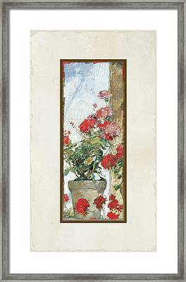 Red Geraniums Against A Sunny Wall Framed Print