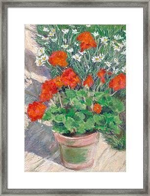 Red Geraniums Framed Print by Judy Adamson