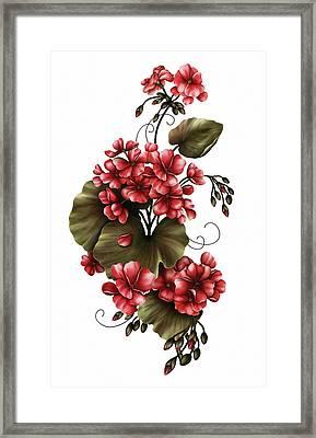 Red Geraniums On White Framed Print by Georgiana Romanovna