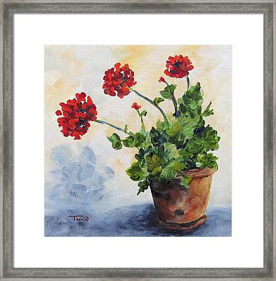 Red Geraniums Framed Print by Torrie Smiley