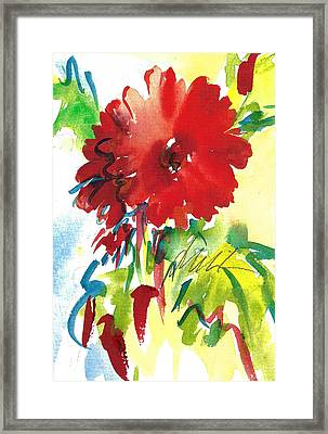 Gerberas Red, White, And Blue Framed Print