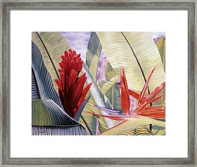 Red Ginger And Bird Of Paradise Framed Print by Stephen Mack