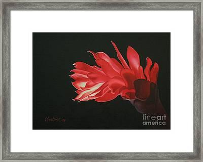 Red Ginger Framed Print by Christine Fontenot