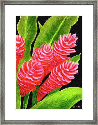 Red Ginger Flowers #235 Framed Print by Donald k Hall
