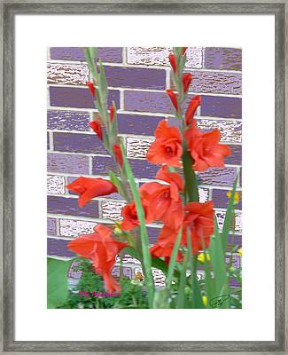 Framed Print featuring the pyrography Red Gladiolas by Elly Potamianos