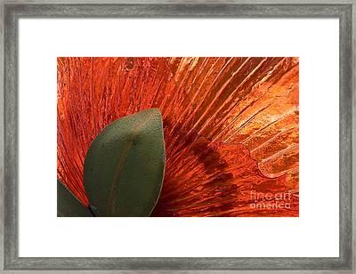 Red Glass Flower Framed Print by Tim Hightower