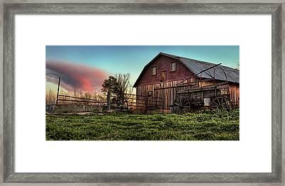 Red Grain Framed Print